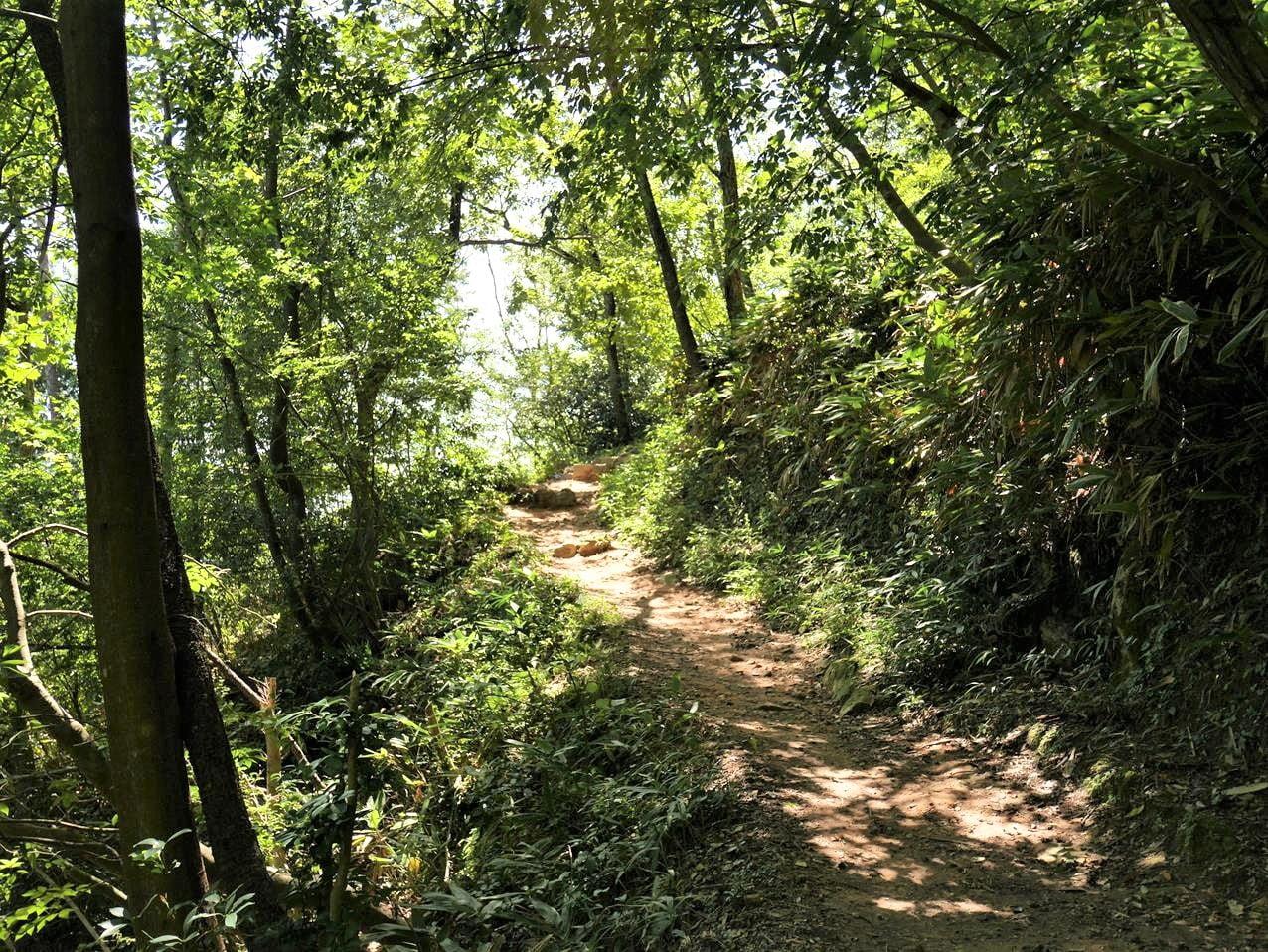 竹田城跡登山步道