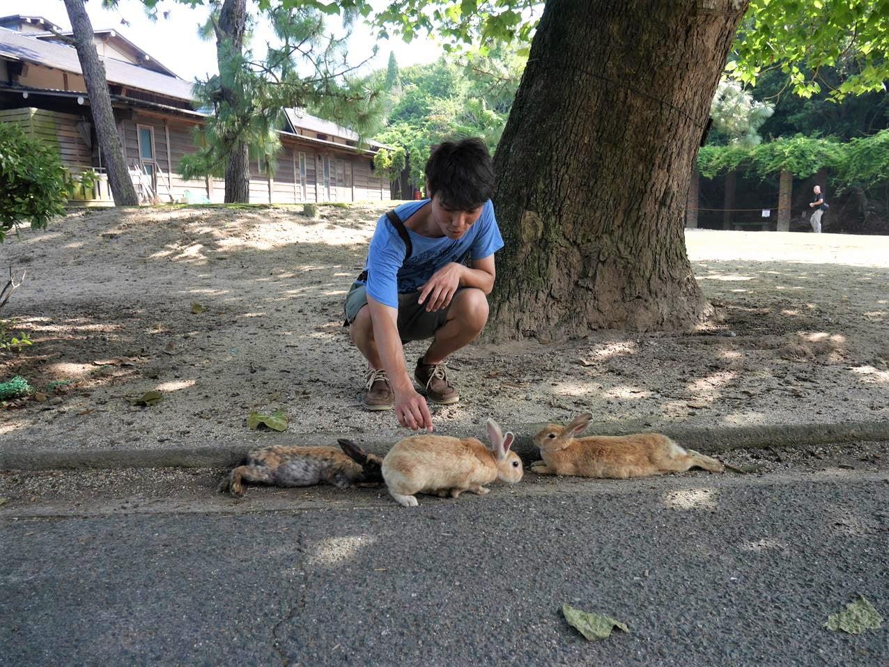 大久野島兔子島