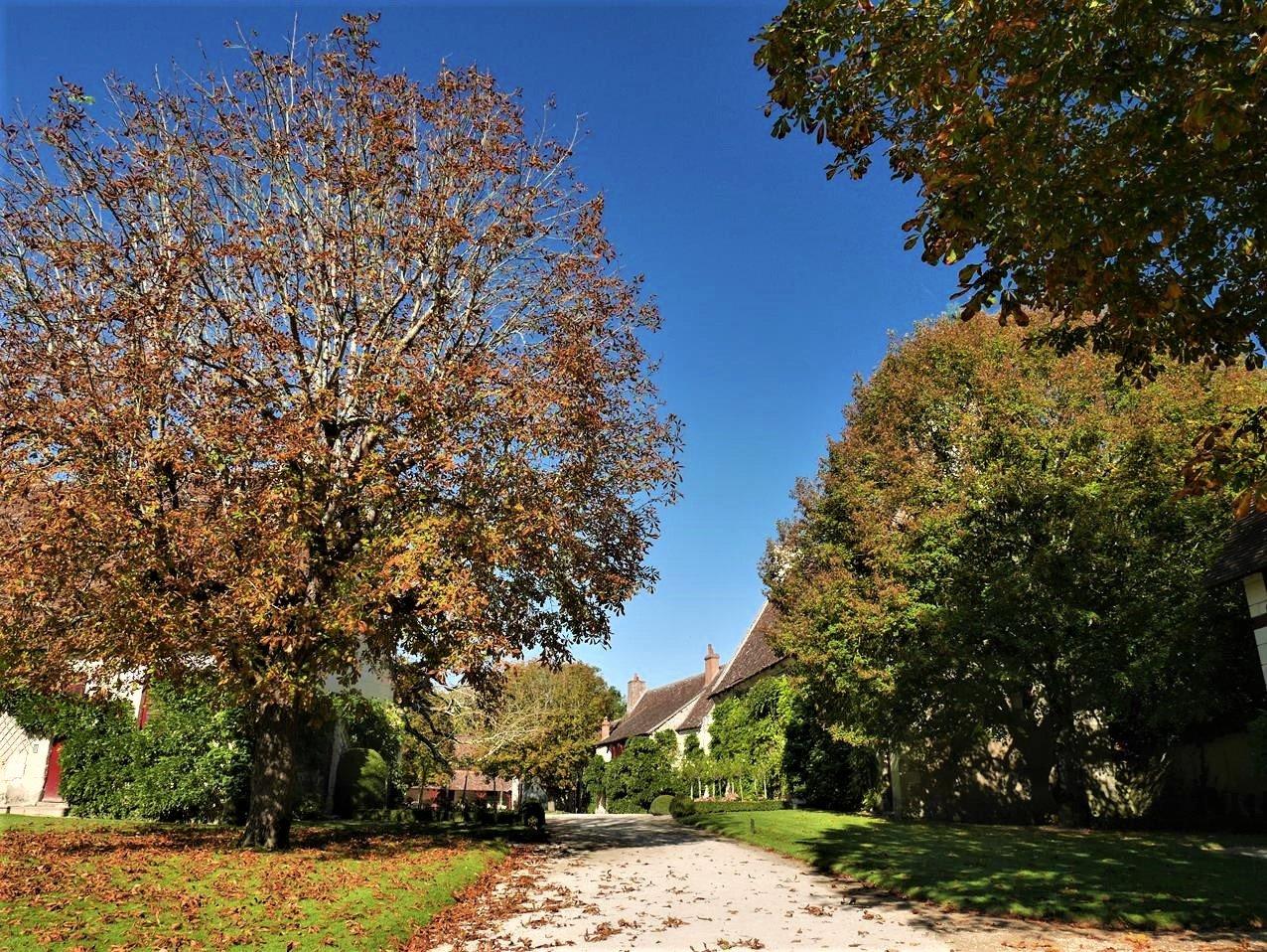 舍農索城堡16世紀農莊
