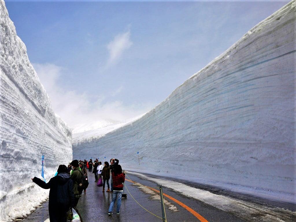 阿爾卑斯路線室堂雪之大谷