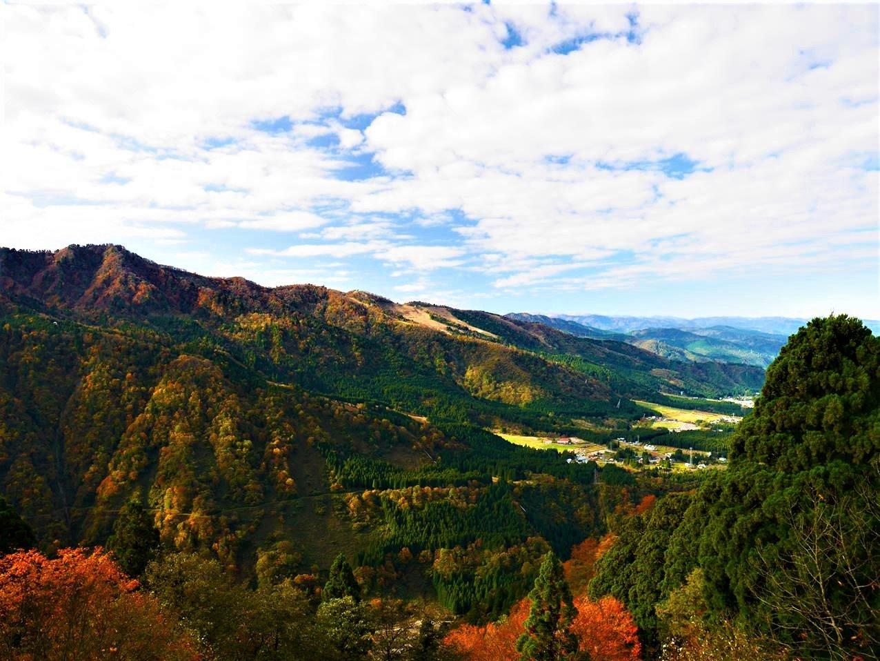 阿爾卑斯路線美女平