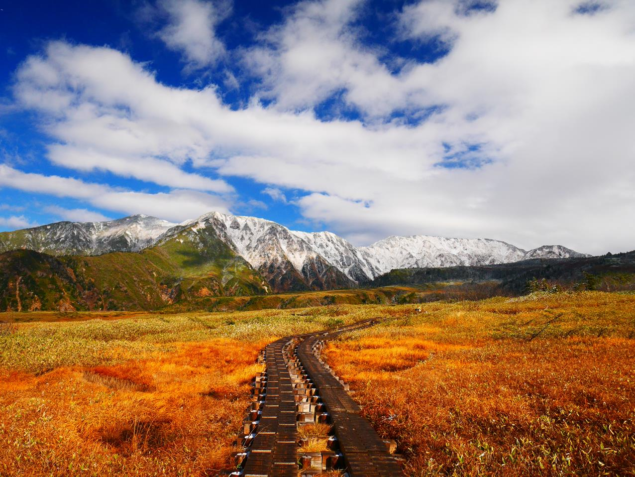 阿爾卑斯路線彌陀之原