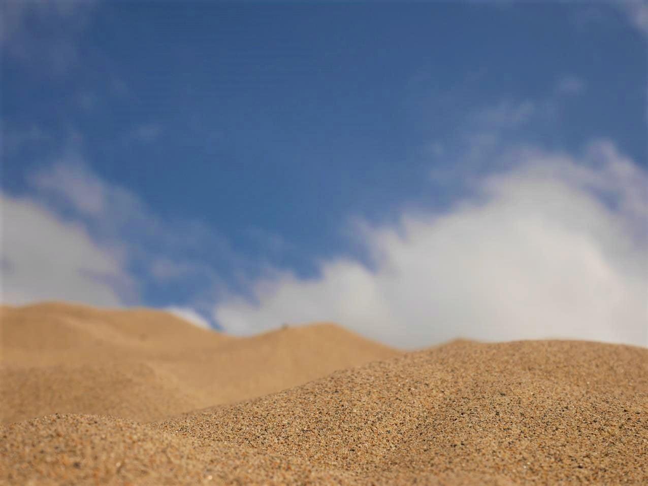 鳥取景點鳥取砂丘