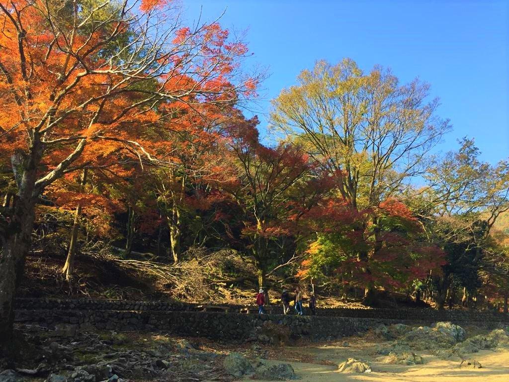 京都楓葉景點嵐山