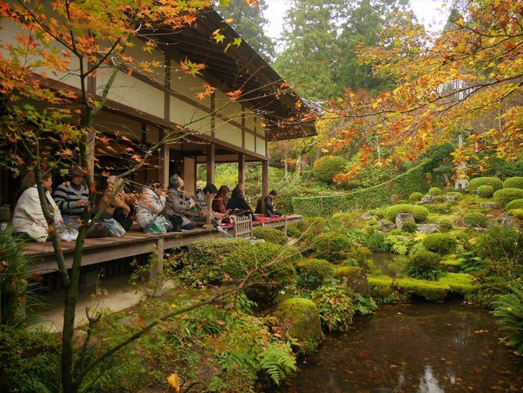 京都大原三千院楓葉