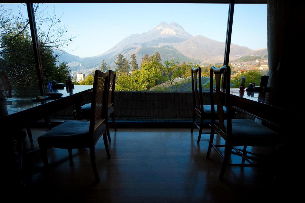 由布院彩岳館餐廳窗景