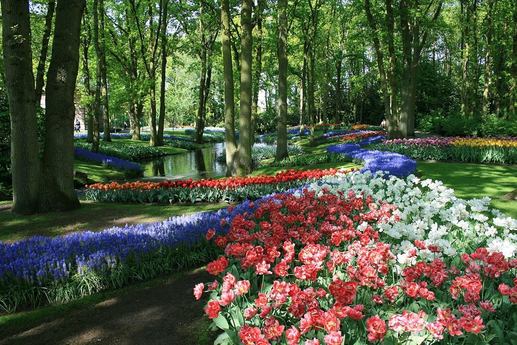 庫肯霍夫花園(Keukenhof Gardens)