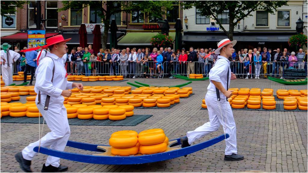 荷蘭起司交易市集搬運工