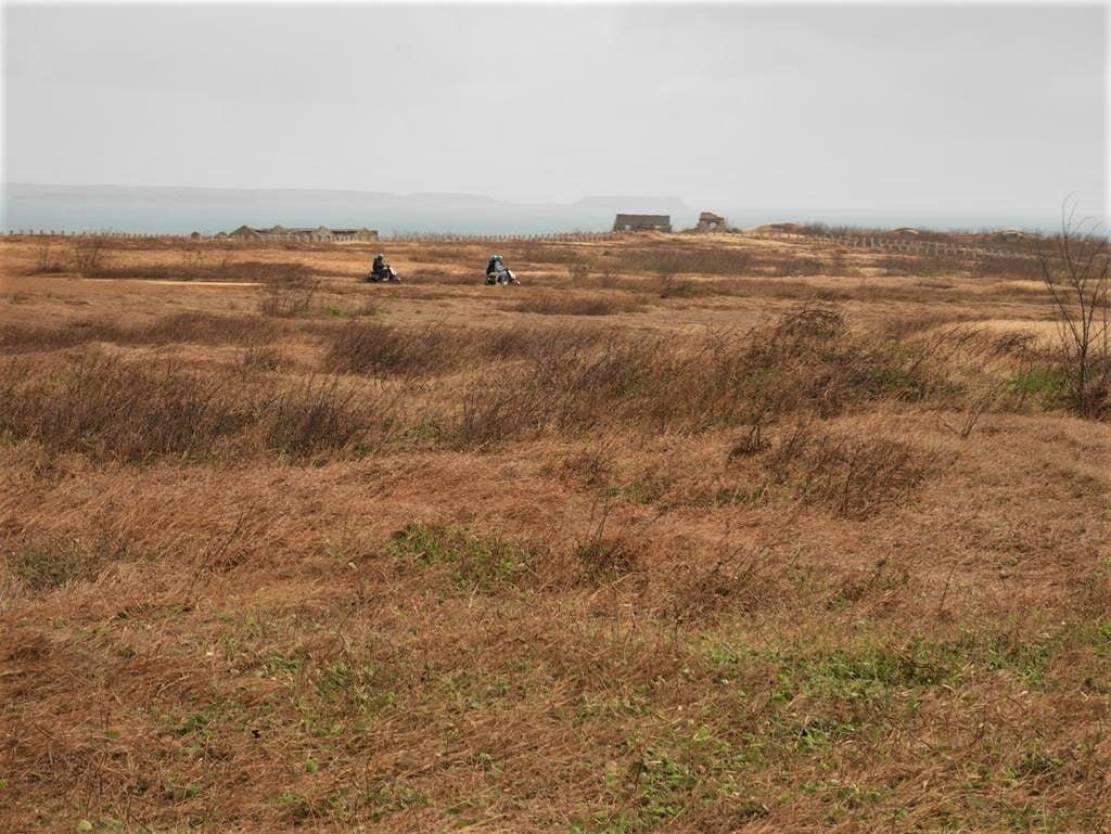 外垵餌砲旁草原