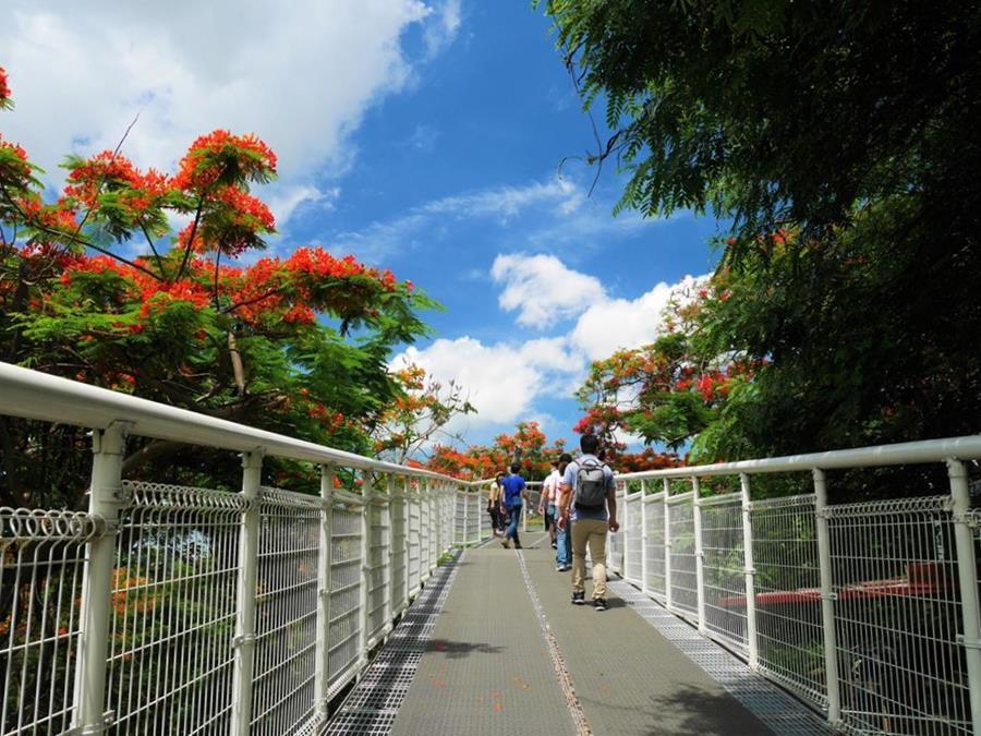 彰化市區一日遊天空步道