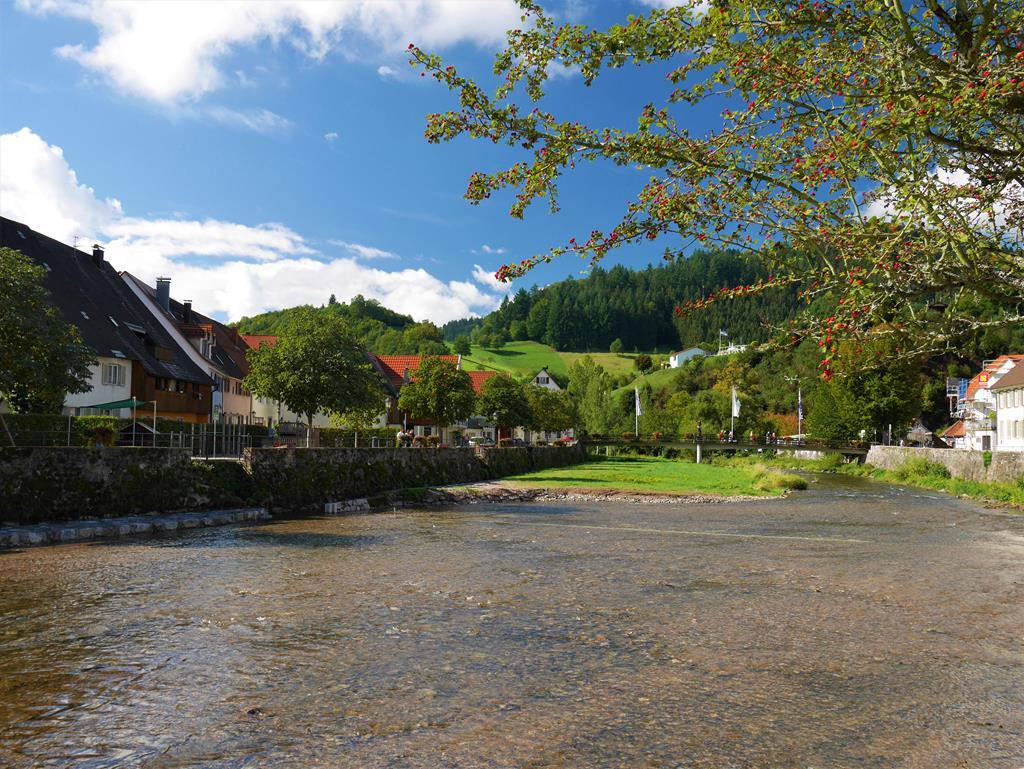 德國黑森林金齊希河風景