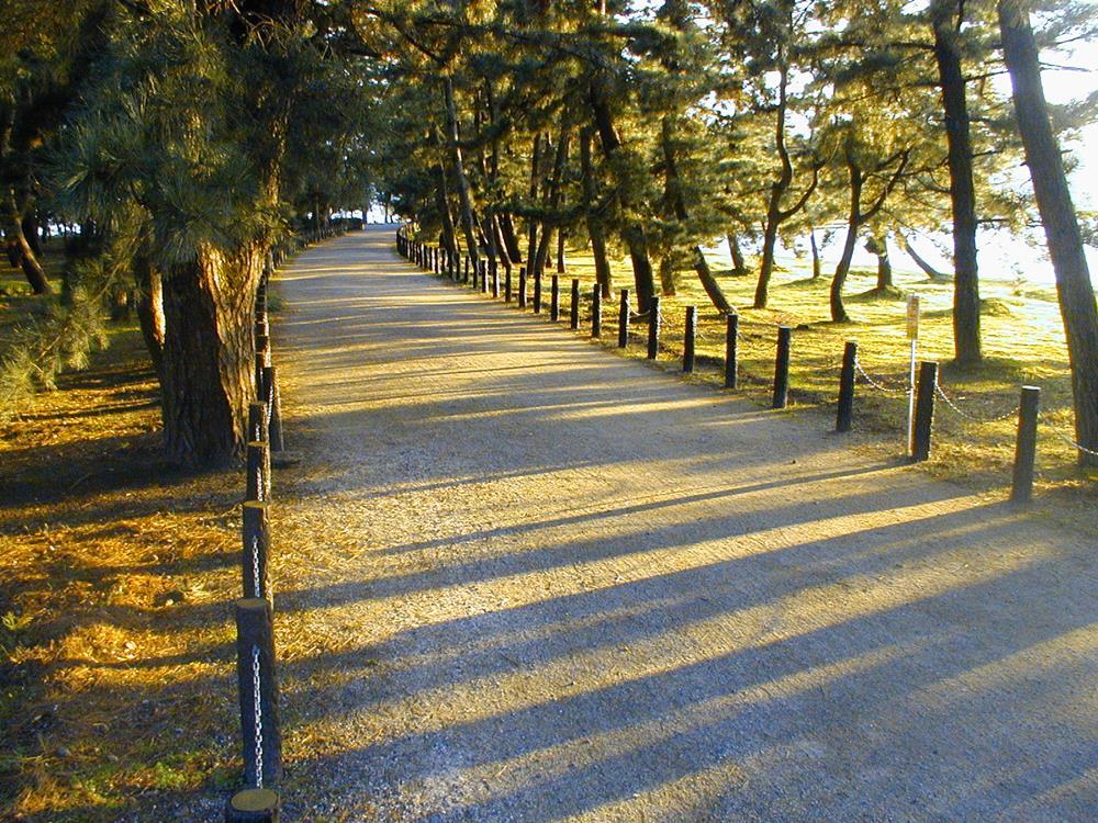 天橋立沙洲步道