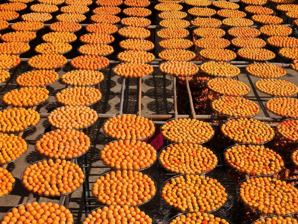 味衛佳二樓曬柿餅景色