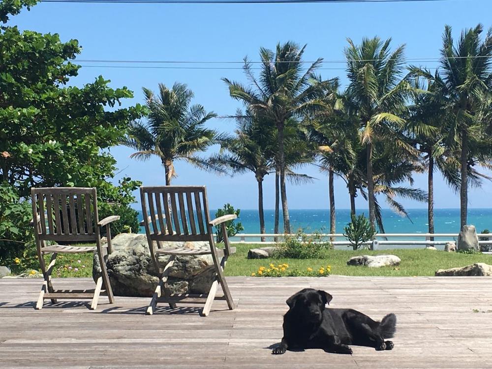 台東椰子海岸民宿前方露臺及草皮