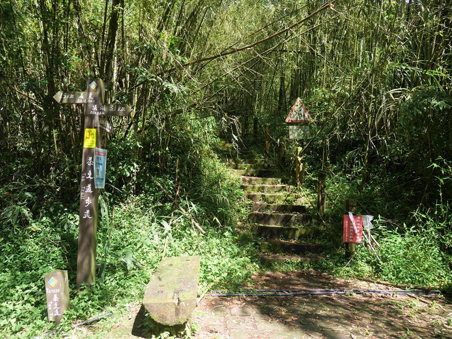 茶之道入口